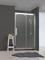 Душевая дверь - BRAVAT - BD120.4103S